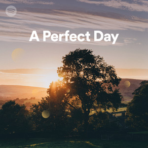 lou reed perfect day other recordings of this song