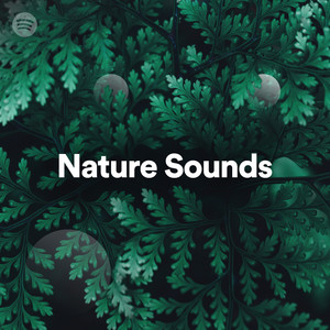 Nature Soundsのサムネイル
