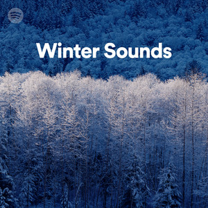 Winter Soundsのサムネイル
